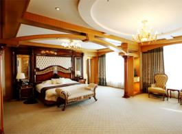 客房类型:豪华单间  面积:20(平方米)